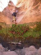 Rock Climbing Photo: Landon working down the drop into the bottom secti...
