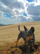 Rock Climbing Photo: Great Sand Dunes