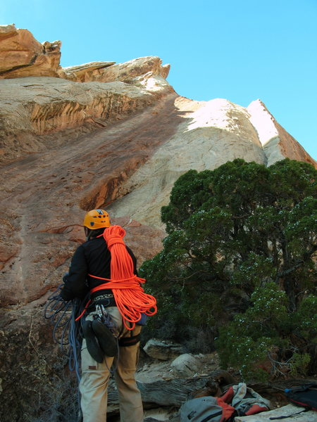 Rock Climbing Photo: Rope up here, next to the ecstatic juniper. The br...