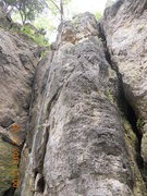 Rock Climbing Photo: Looking at Nosey from the bottom of the Sential Wa...