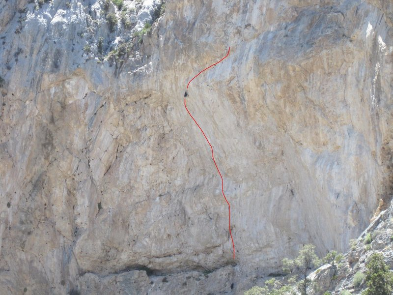 Jumbo Pumping Hate 5.14a at Clark Mountain