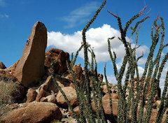 Rock Climbing Photo: Eddy. Photo by Blitzo.