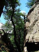 Rock Climbing Photo: Matt high up on Generation Gap.  Great route!