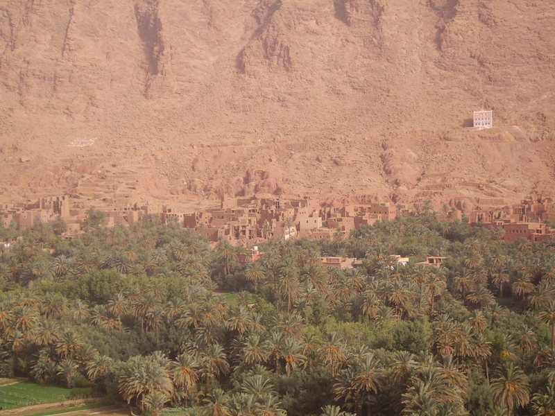 valley of date palms outside the Todra Gorge