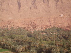 Rock Climbing Photo: valley of date palms outside the Todra Gorge