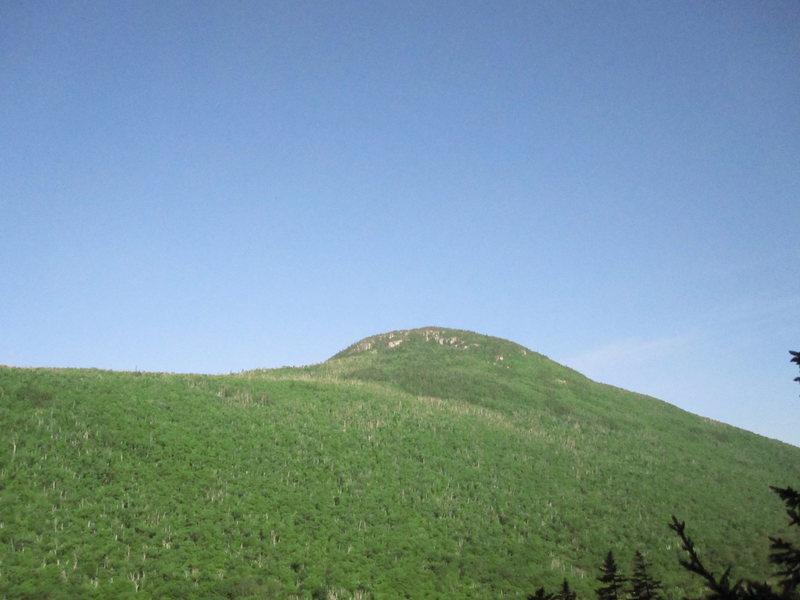 Rock Climbing Photo: ZeaCliff