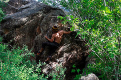Rock Climbing Photo: Shady Character Boulder, Anthropic Principle.