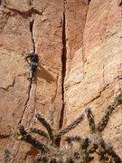 Rock Climbing Photo: Samuel approaching the crux.