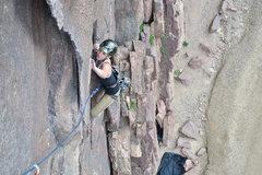 Rock Climbing Photo: Jill on the Bastille.