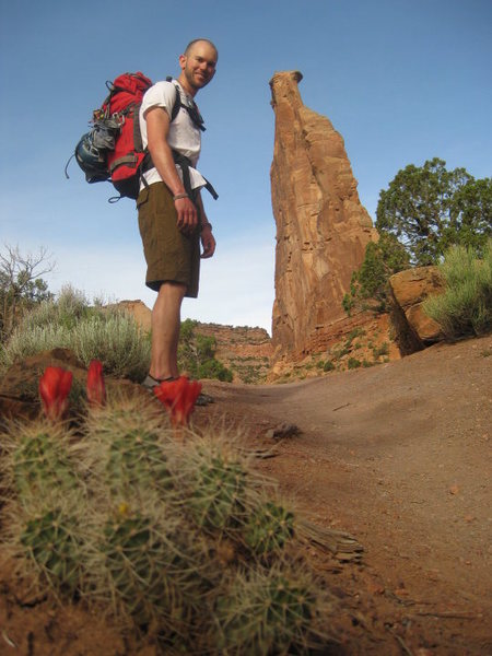 Approach to Otto's Route on Independence Monument. Blooming cactus along the way were STUNNING!