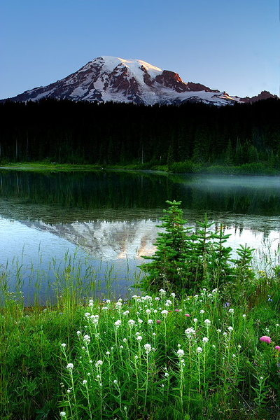 Rock Climbing Photo: Rainier Reflections - Washington