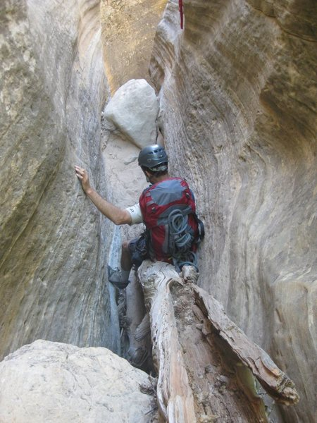 A long, fun tree butt slide in Mystery Canyon, Zion. Watch out for splinters up your arse. <br> <br> Taken 6/24/10