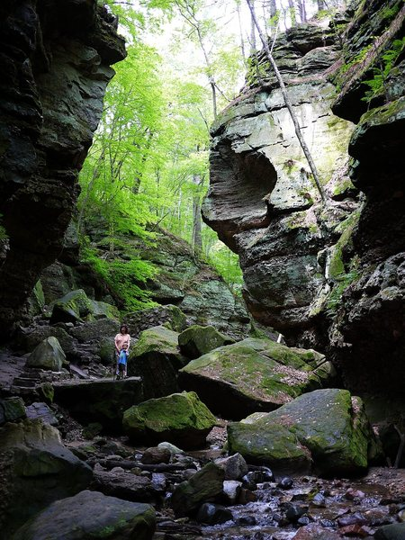 Rock Climbing Photo: Parfrey's Glen.  Amazing.
