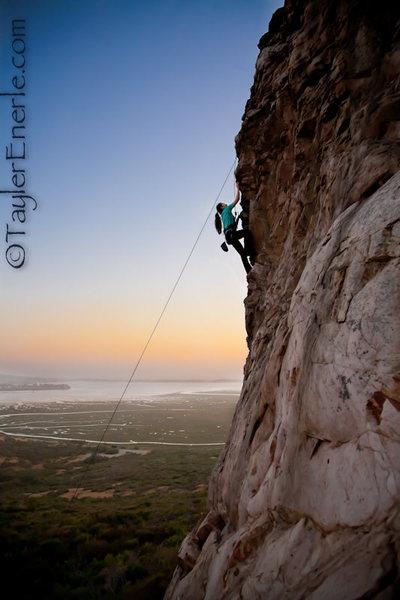 ©taylerenerle.com Emily Jio climbing the Fly (5.8).