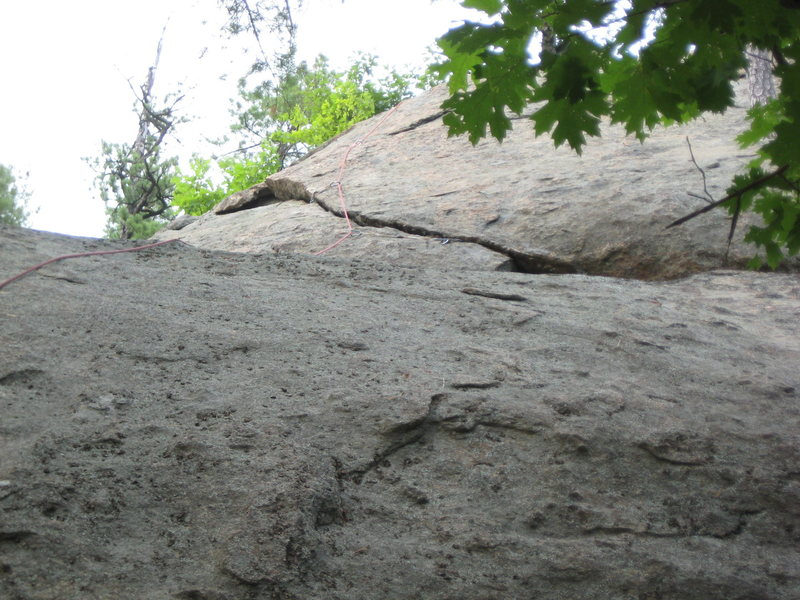 Top of the Pine Tree Crack