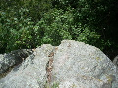 Rock Climbing Photo: Set your TR in the bowl shaped notch.