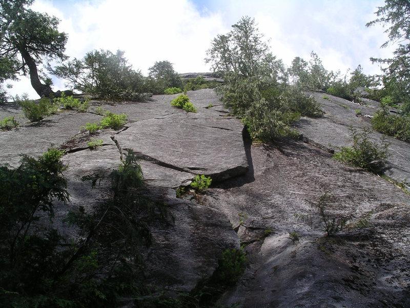 The start of Big Tree One (zig zag crack left of the flake)