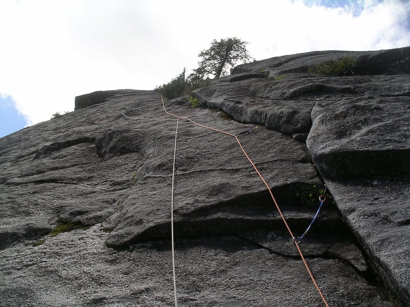 Rock Climbing Photo: Looking up the third pitch of Big Tree One