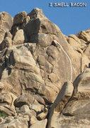 "Rock Climbing Photo: ""I Smell Bacon"". Photo by Blitzo."