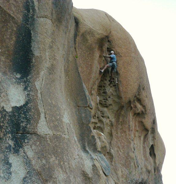 Rock Climbing Photo: Honeycomb.