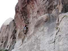 Rock Climbing Photo: Frank Bentwood on Honeycomb.