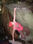 Rock Climbing Photo: Cougar Crawl starts low on jugs then out right to ...