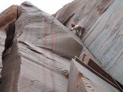 Rock Climbing Photo: red metolius anybody?