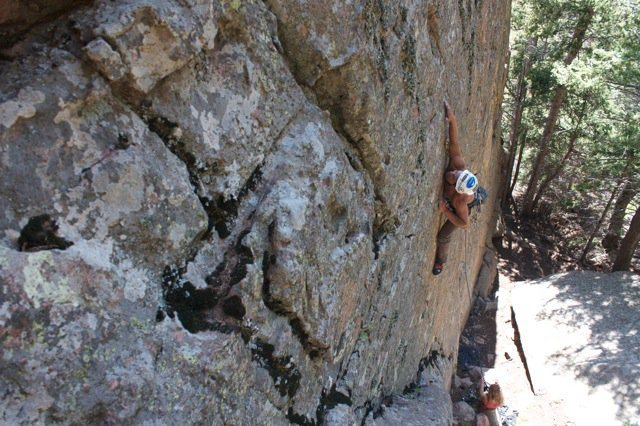 crux section of the protege