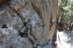 Rock Climbing Photo: crux section of the protege