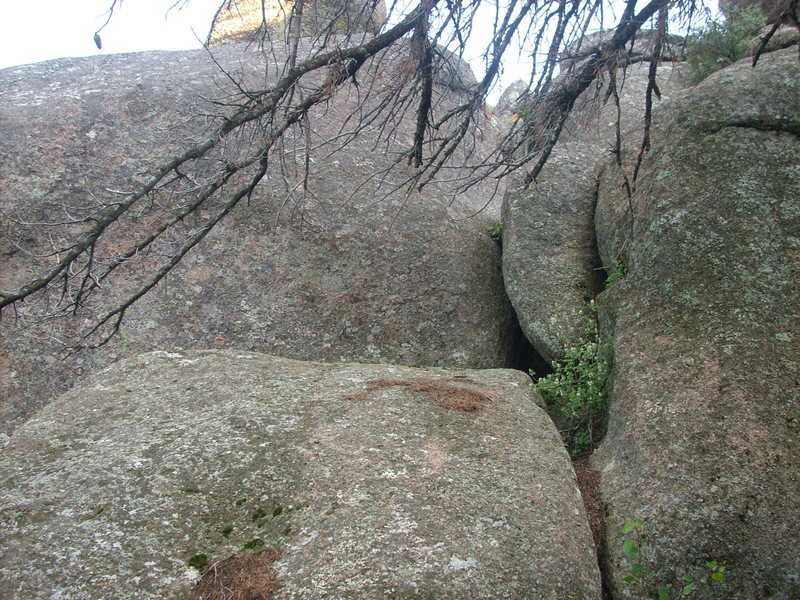 Rock Climbing Photo: For descent either downclimb the pine needle fille...