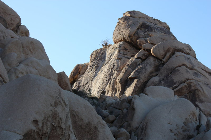 Rock Climbing Photo: Indian Palisades Corridor, Joshua Tree NP
