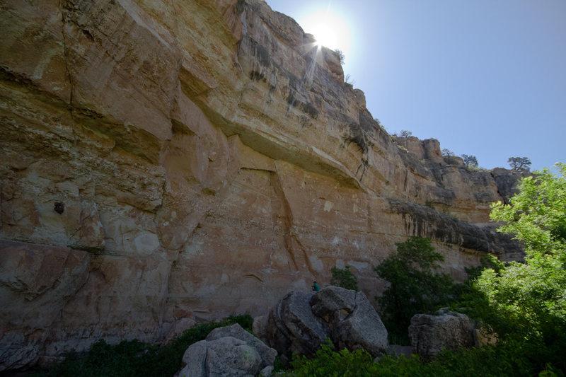 Rock Climbing Photo: The Asylum - main wall
