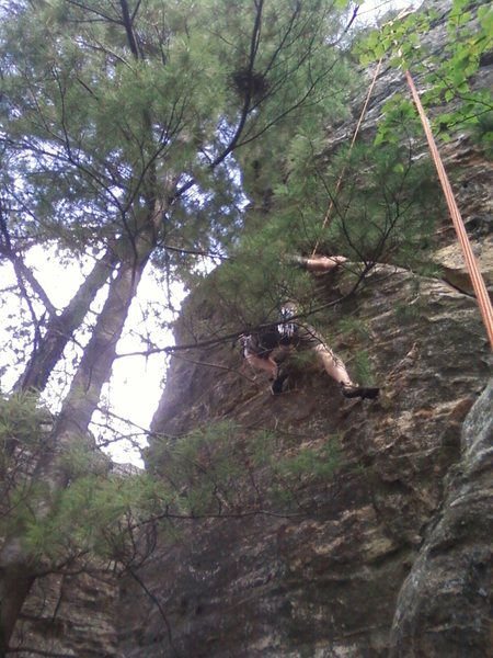 Rock Climbing Photo: Toby, obstructed by the tree :(