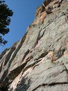 Rock Climbing Photo: Upside Down Race Car Kitty.