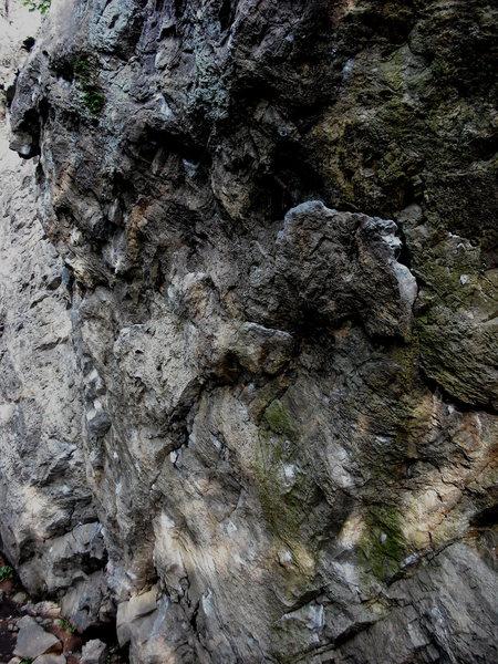 Rock Climbing Photo: The short center wall of the crag.