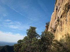 Rock Climbing Photo: long view