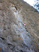 Rock Climbing Photo: Chicken Ranch Bingo