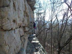 Rock Climbing Photo: the ledge.yellow bluff