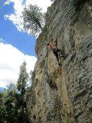 Rock Climbing Photo: Doug leading unknown 11