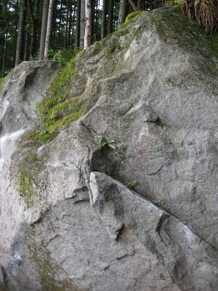 Regatta de Blanc (V0) in the Sanctuary. Traverse up and left to the middle to topout.
