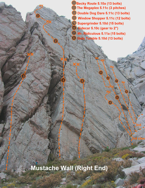 Rock Climbing Photo: Mustache Wall