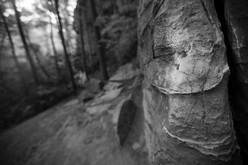 Rock Climbing Photo: Left Flank