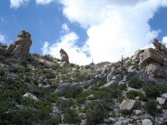 Rock Climbing Photo: just uphill of pharaoh/ripple wall parking