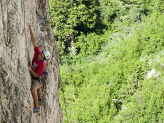Rock Climbing Photo: Brandon on TR
