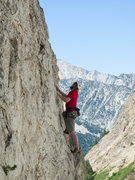 Rock Climbing Photo: The Riddler getting closer