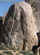 """Rock Climbing Photo: """"Nutty Buddy"""". Photo by Blitzo."""