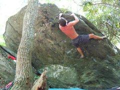 "Rock Climbing Photo: Steve Lovelace on the FA of ""Woodgrain"" ..."