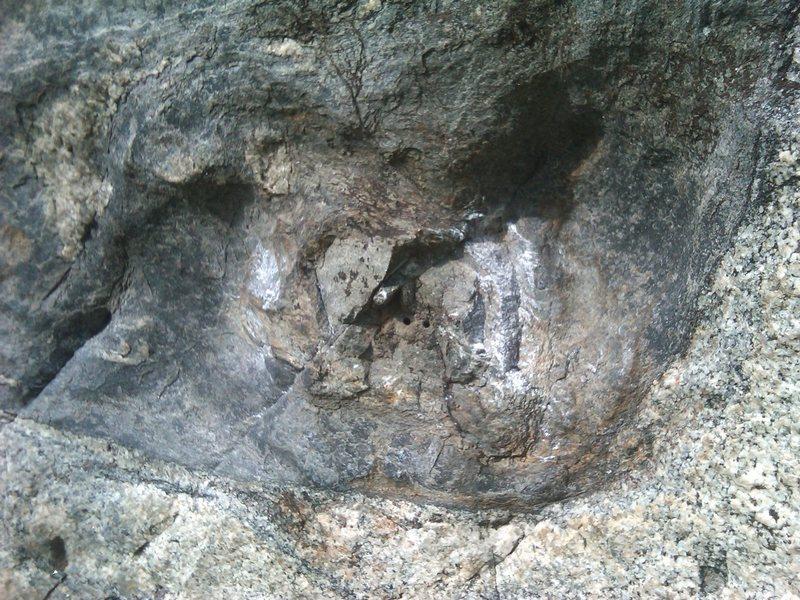 Rock Climbing Photo: Pinch (right hand start)