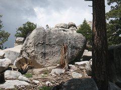 Rock Climbing Photo: Green Tea Boulder, Tramway