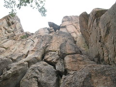 Rock Climbing Photo: Castle Rock - Southeast Face, Big Bear